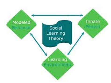 Social observations essay